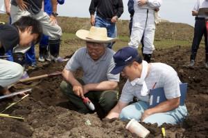 サブソイラーを使用した後の土壌観察