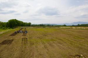 砂利採取後に作土をのせた畑